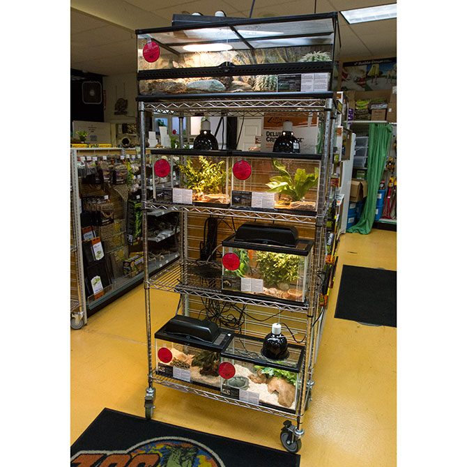 Nsf Wire Shelving | Nsf Wire Shelving Units Retail Shelving Systems By Grand